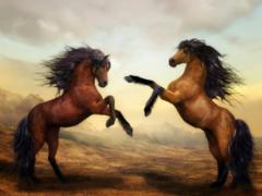 1954年属马的寿命能活多少岁(图文)