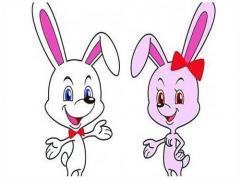 属兔的今年多大2021年 生肖兔今年多大岁数2021(图文)